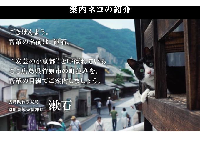 p_cat_pc